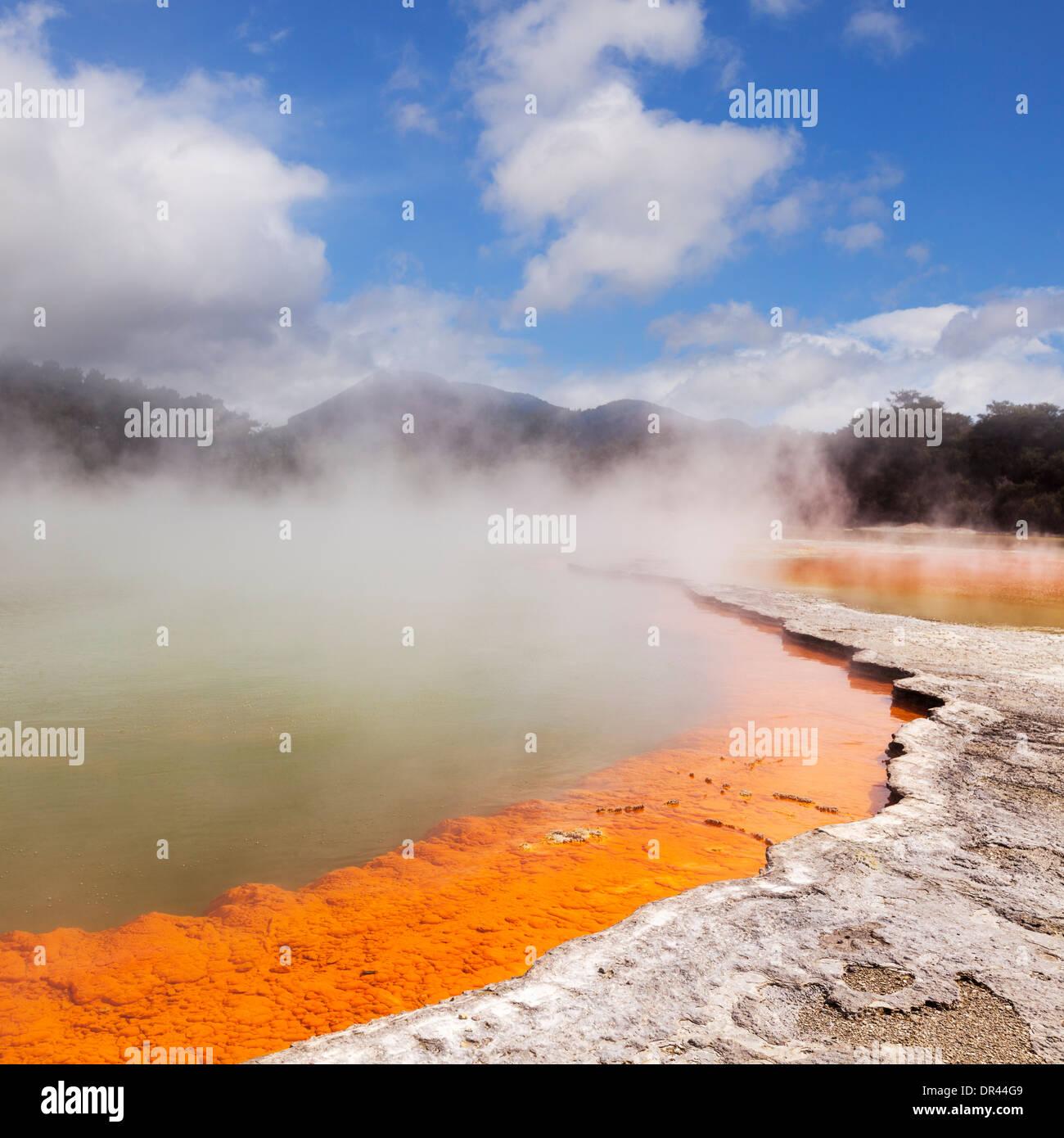 Acqua di cottura a vapore presso la piscina di Champagne, Waiotapu Riserva Termale, a Rotorua, Nuova Zelanda. Immagini Stock