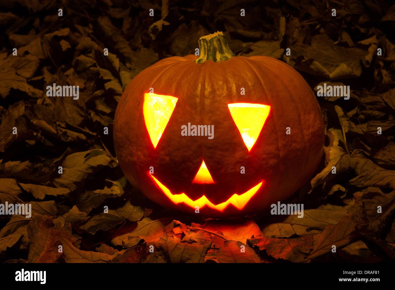 Zucca Halloween Essiccare.Jack O Lantern Halloweens Zucca On Dark Foglie Essiccate
