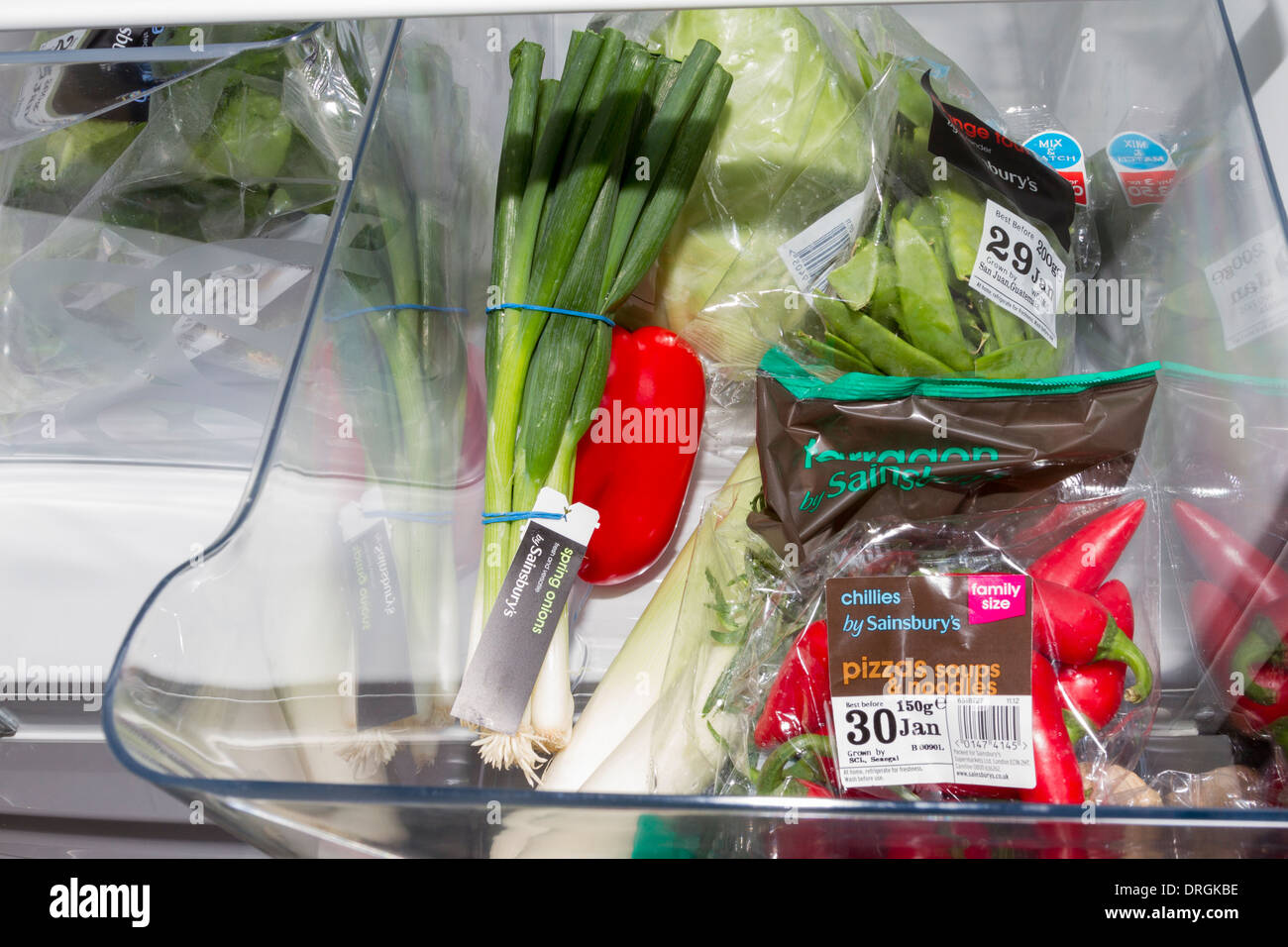 Elementi di insalata/produrre mantenuto fresco all'interno di un frigorifero Immagini Stock