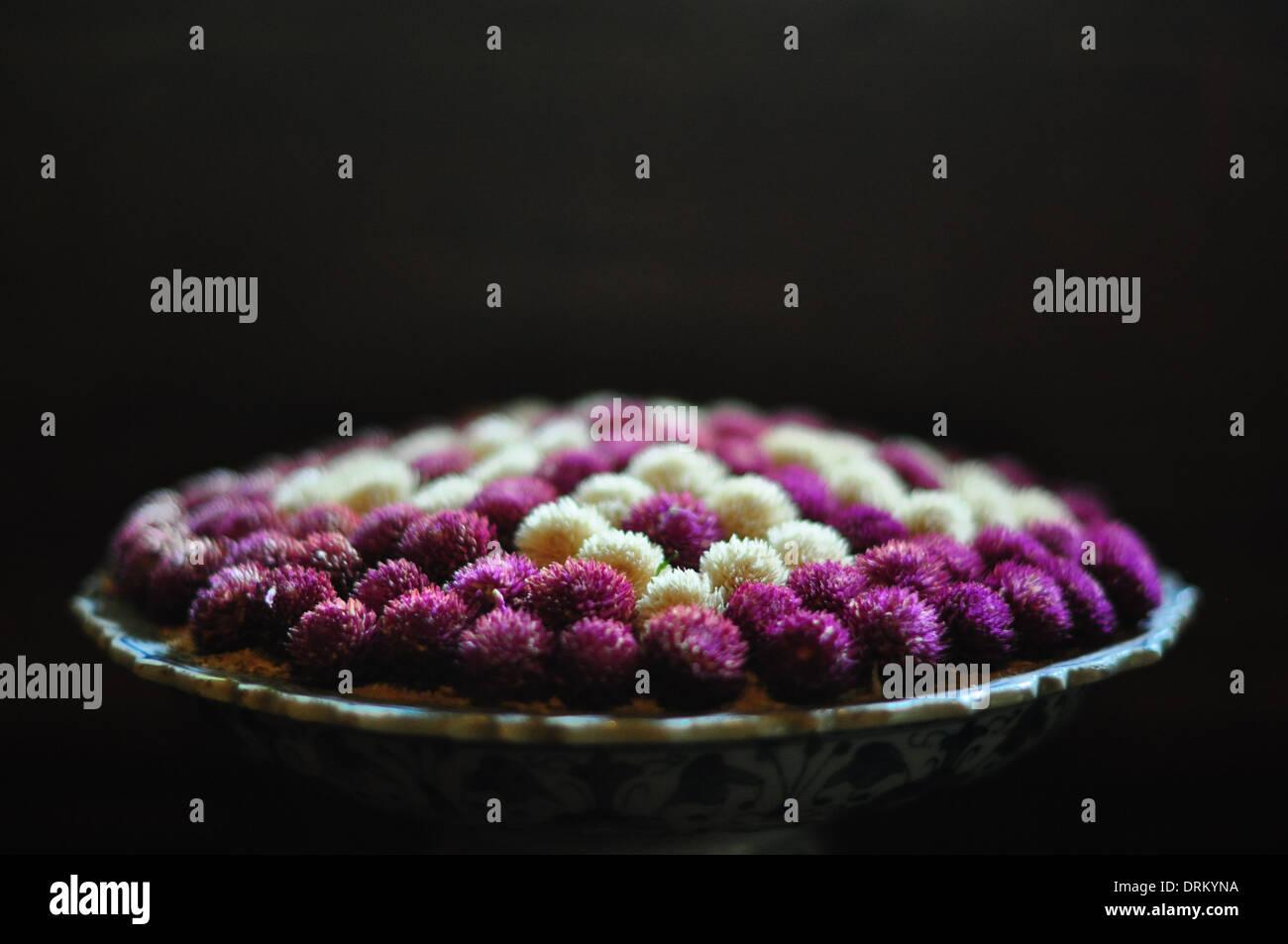 """Amaranto a globo (gomphrena globosa o """"bachelor pulsante"""") fiori in un Thai composizioni floreali. Immagini Stock"""