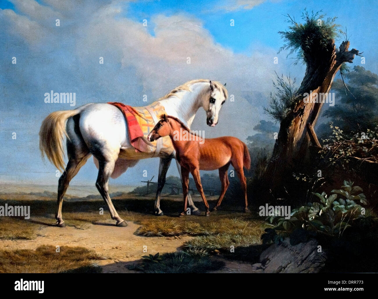Charles Verlat 1824-1890 Mare e puledro 1846 belga fiamminga del Belgio Immagini Stock