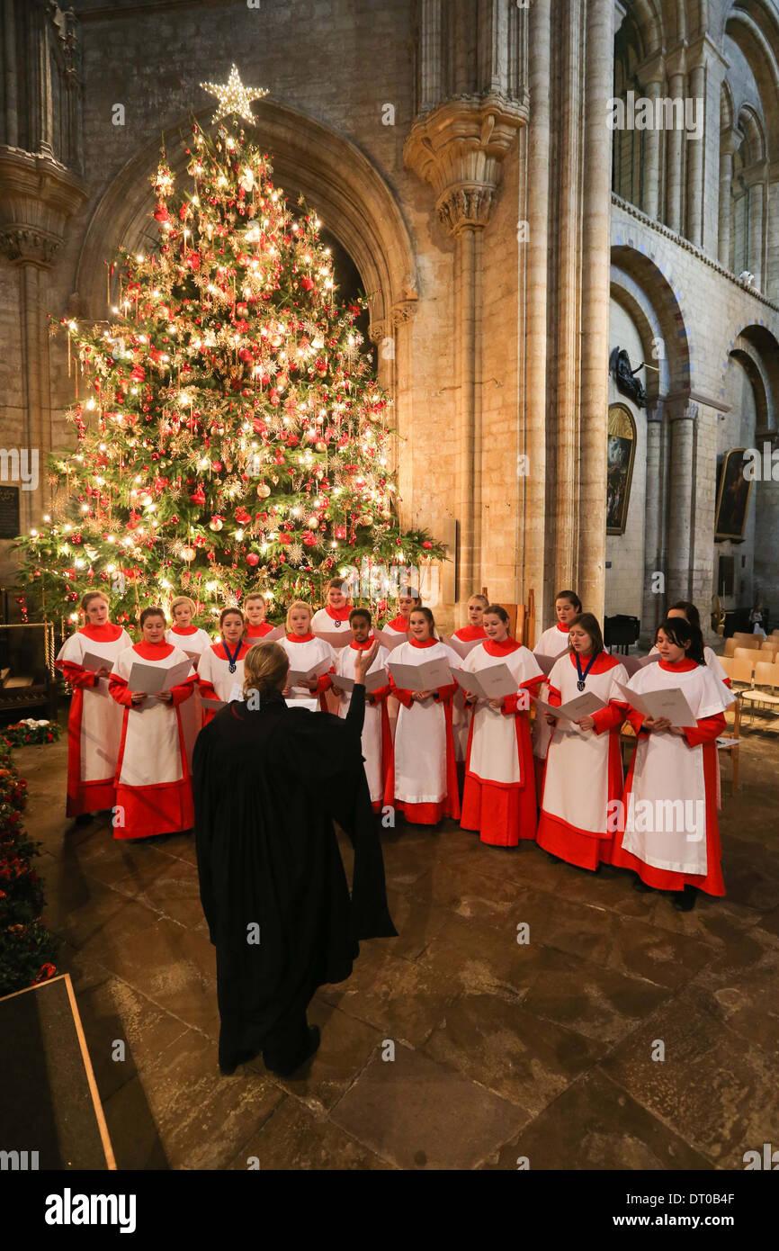 Cattedrale di Ely ragazze coro ripassando PER IL NATALE CAROL SERVICE. Immagini Stock