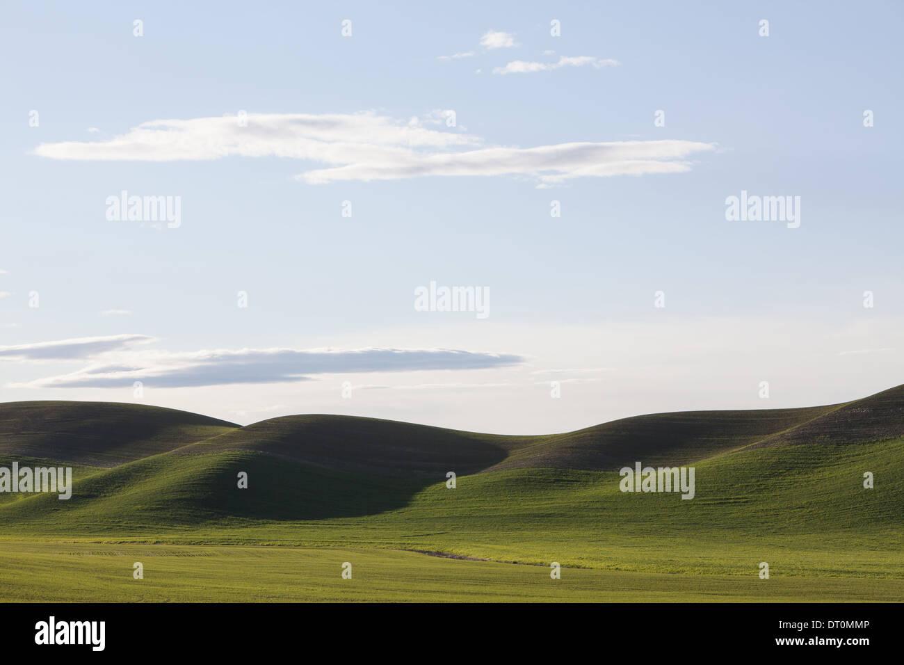 Stati Uniti di Washington verde delle colline e terre al crepuscolo Immagini Stock