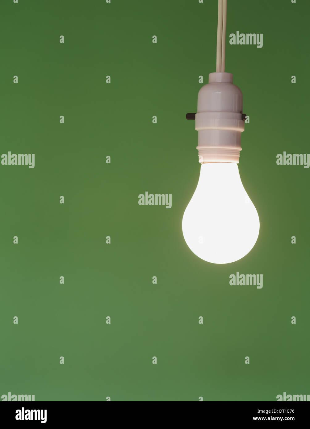 Il vetro della lampadina luce e interruttore elettrico bianco flex Immagini Stock
