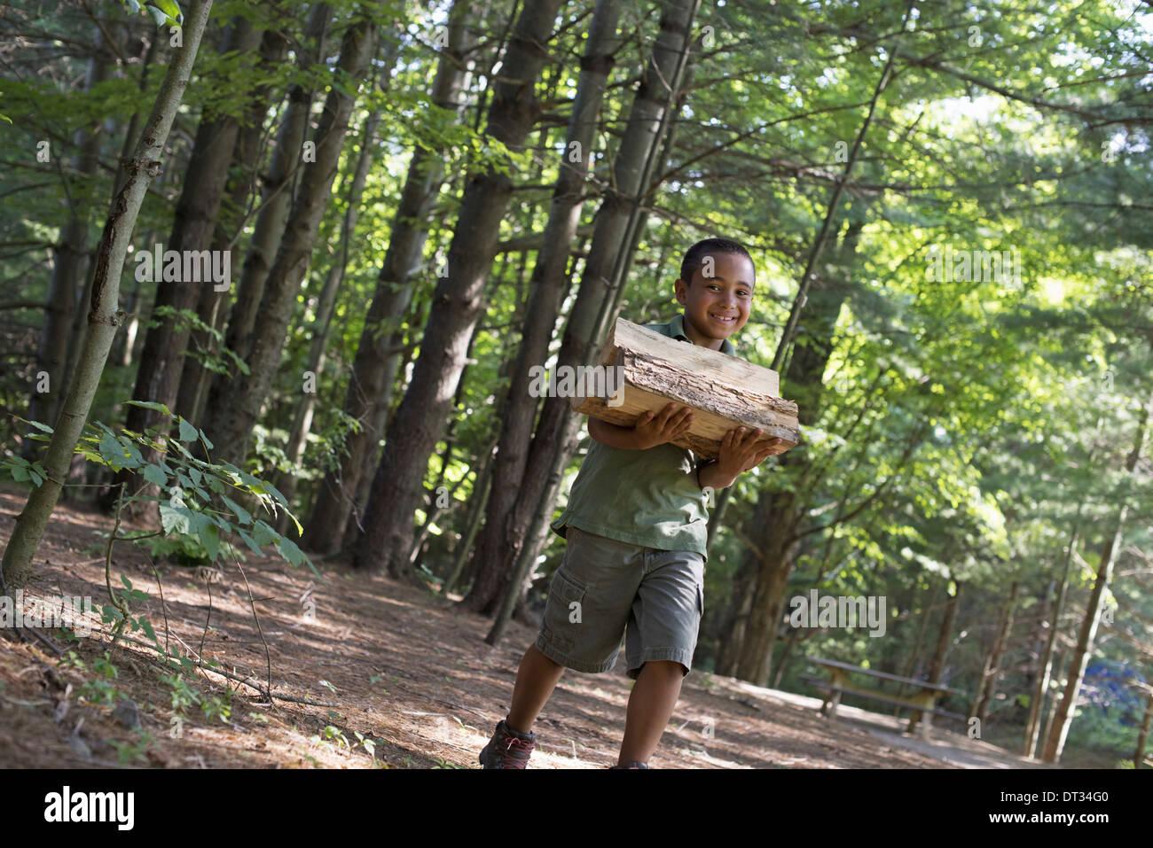 Estate un ragazzo che trasportano legna da ardere attraverso i boschi Immagini Stock