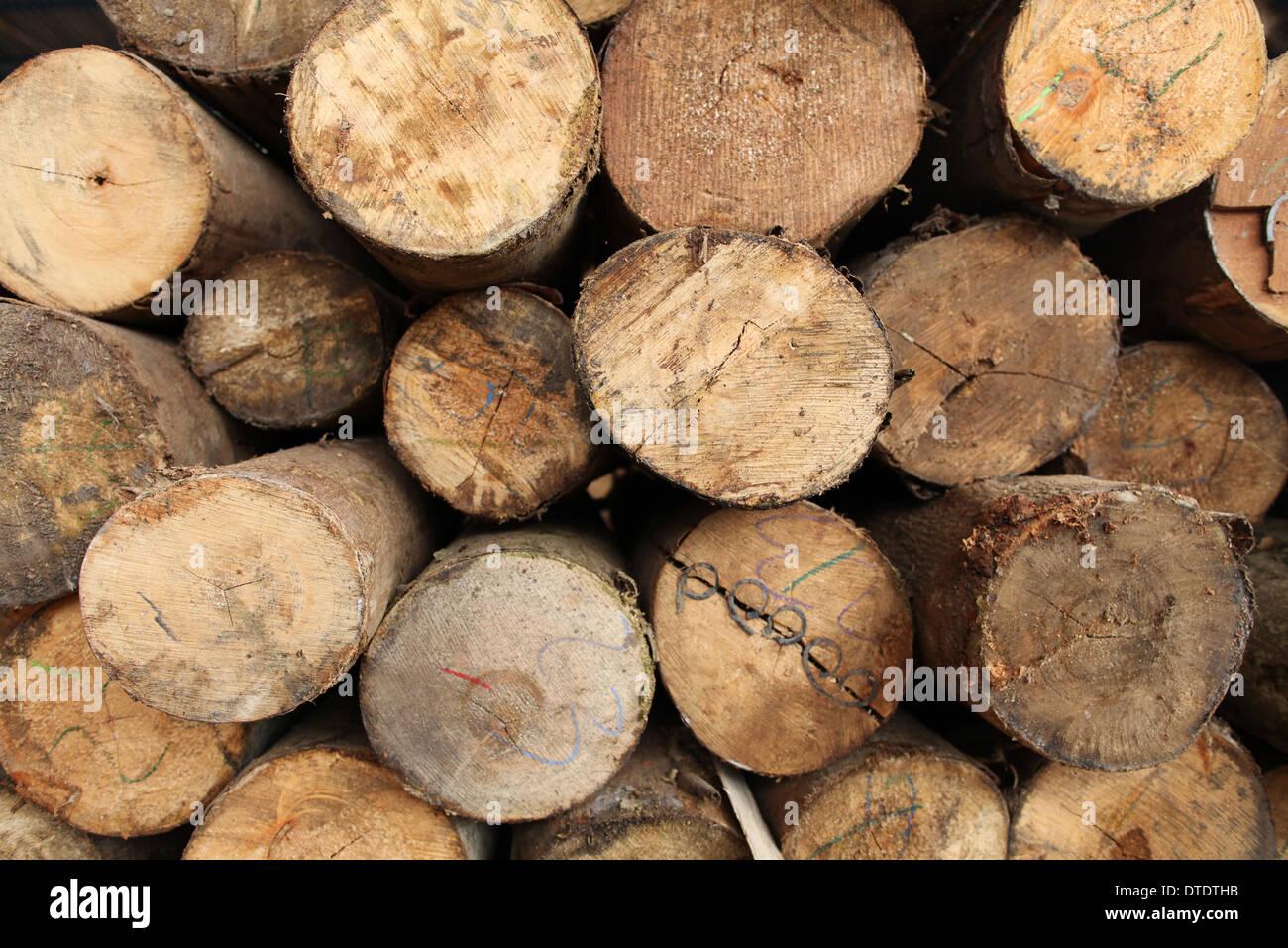 Log in legno sfondi texture Immagini Stock