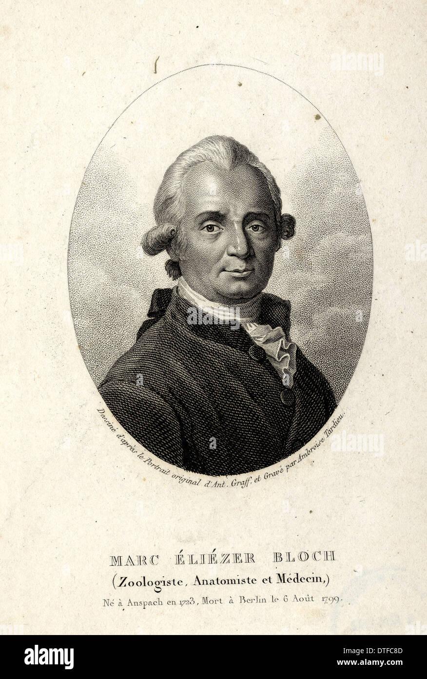 Eliezer Marc Bloch (1723-1799) Immagini Stock