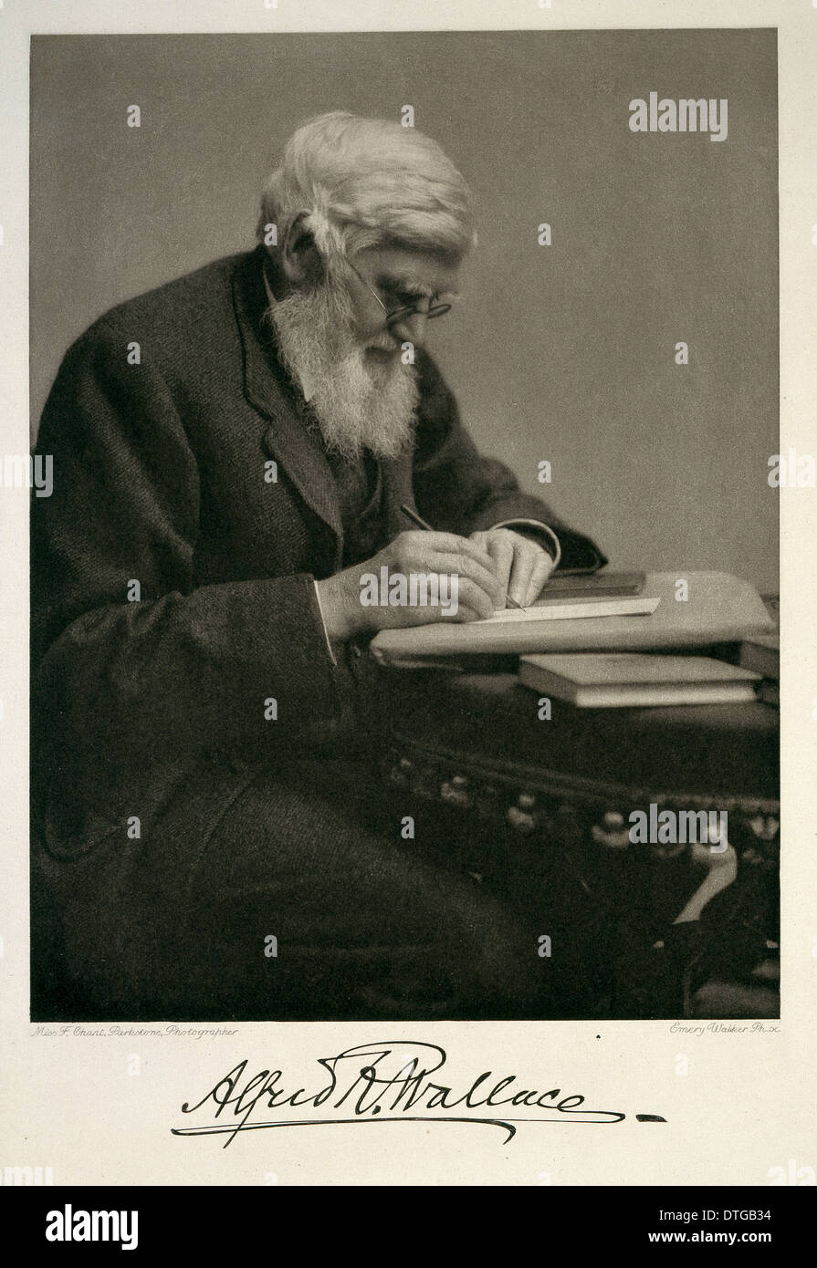 Alfred Russel Wallace (1823-1913) Immagini Stock
