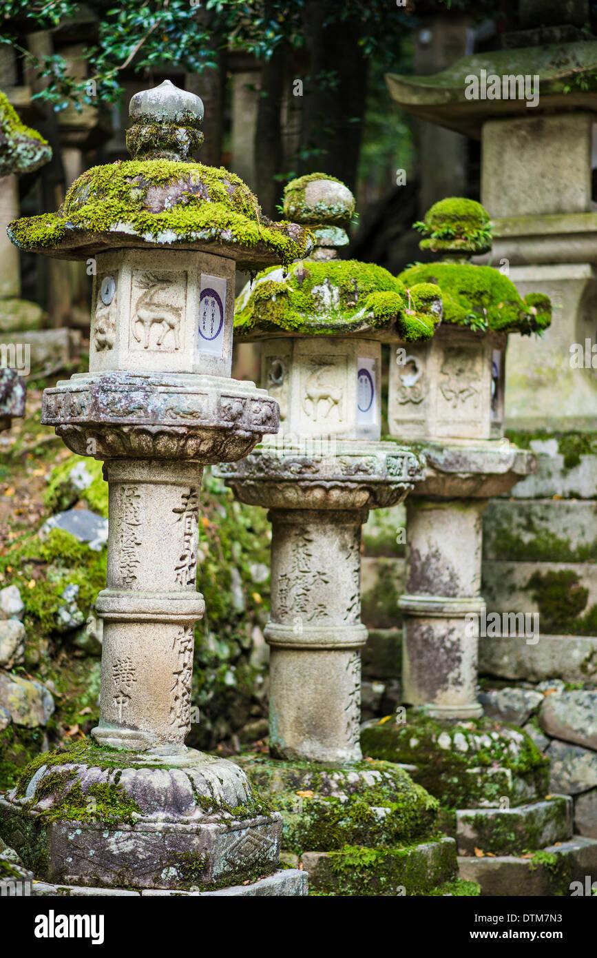 Nara, Giappone. Lanterne giapponesi in corrispondenza di Kasuga Taisha Sacrario. Foto Stock