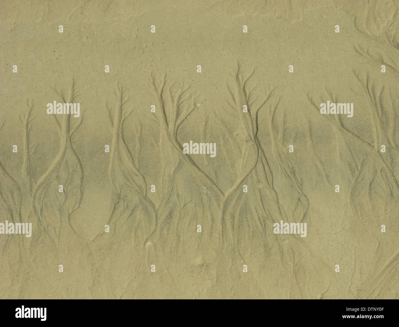 Pattern in sabbia a una spiaggia sulle Comore e isola in Africa Immagini Stock