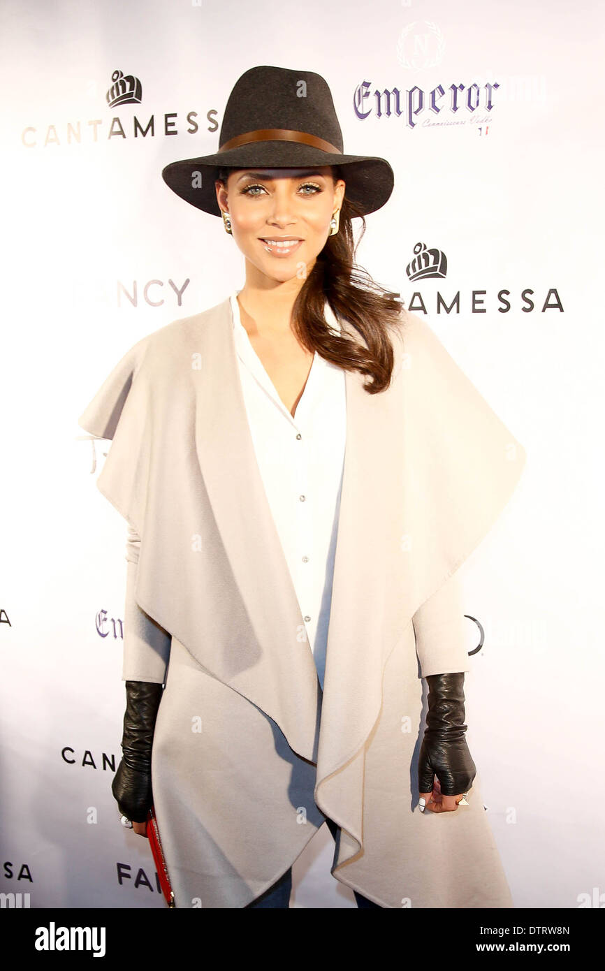 L'attrice Denise Vasi assiste il Cantamessa uomini Launch Party a Tao Downtown Lounge il 10 febbraio 2014 in New York City. Immagini Stock