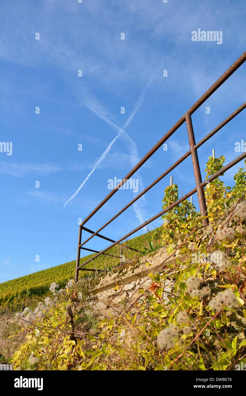 Vigneti della Mosella con cielo blu Germania Weinberg blauer Himmel Mosel mit Weinbergsmauer Geländer Kondensstreifen sonniger Tag Foto Stock