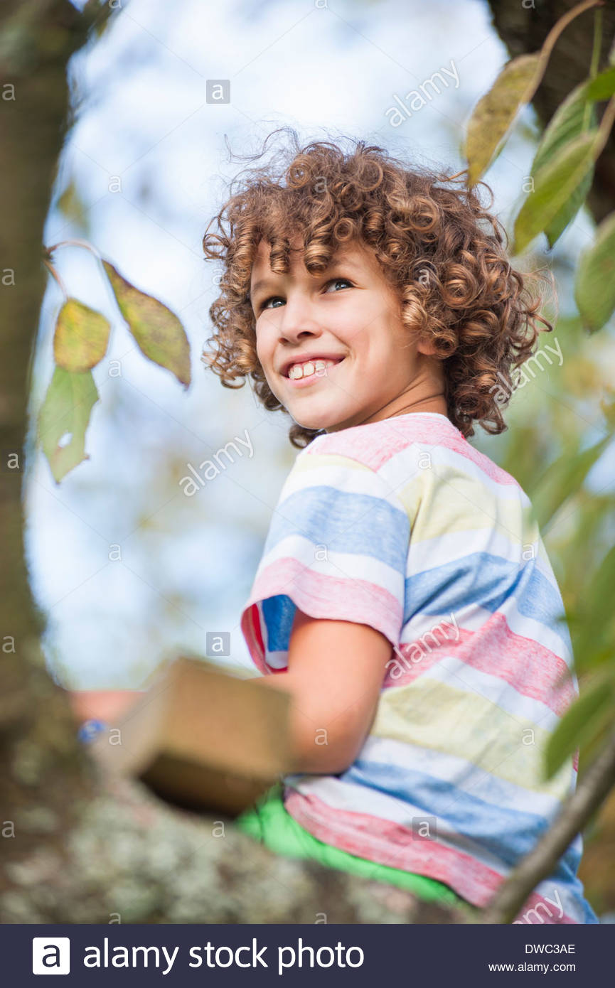 Ragazzo seduto su albero Immagini Stock