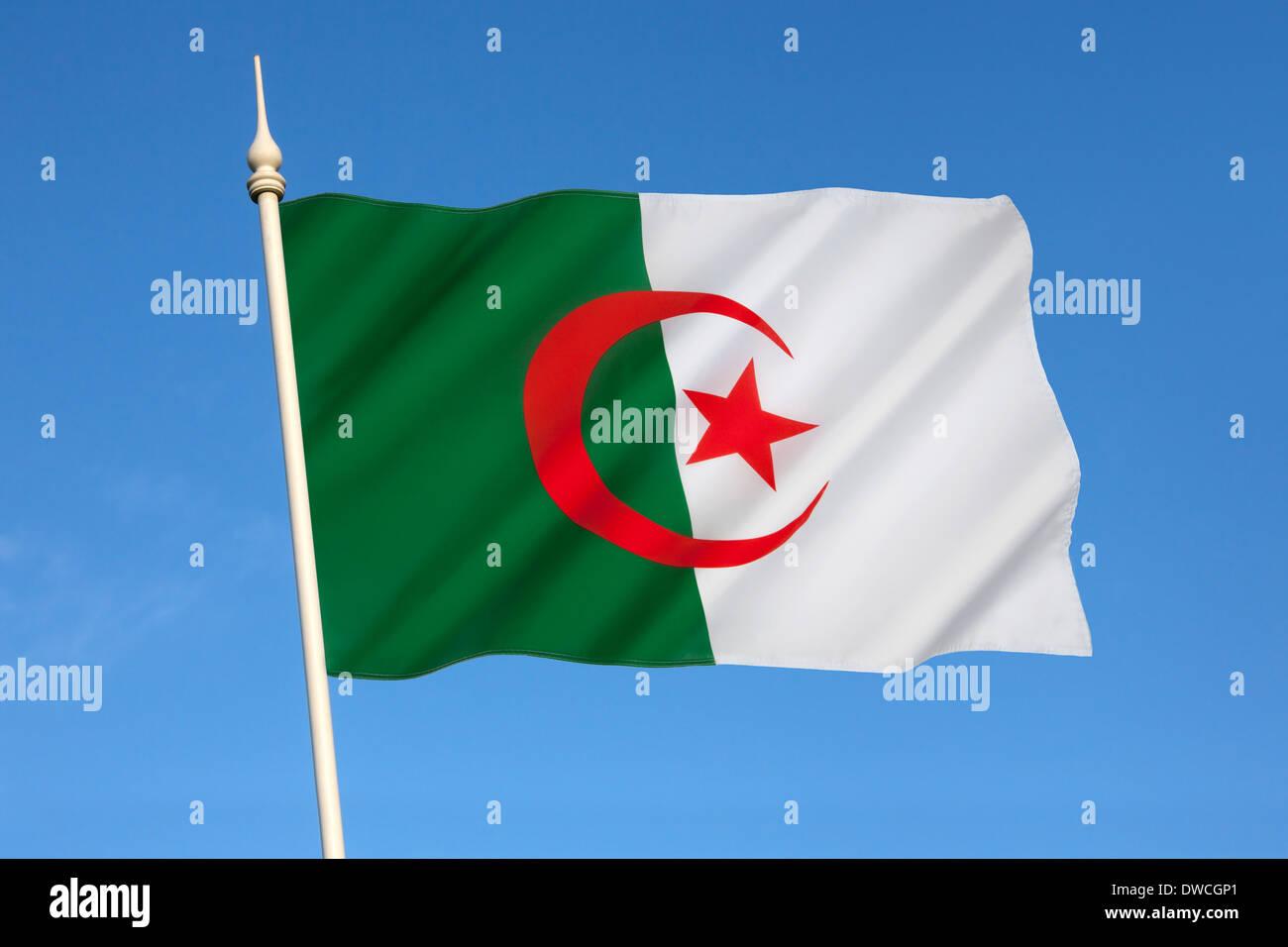 Bandiera dell'Algeria Immagini Stock