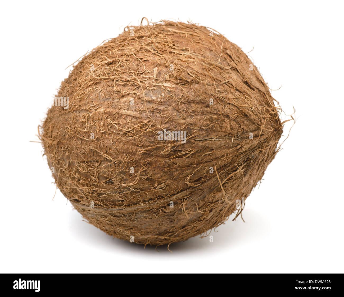 Noce di cocco singolo isolato su bianco Foto Stock