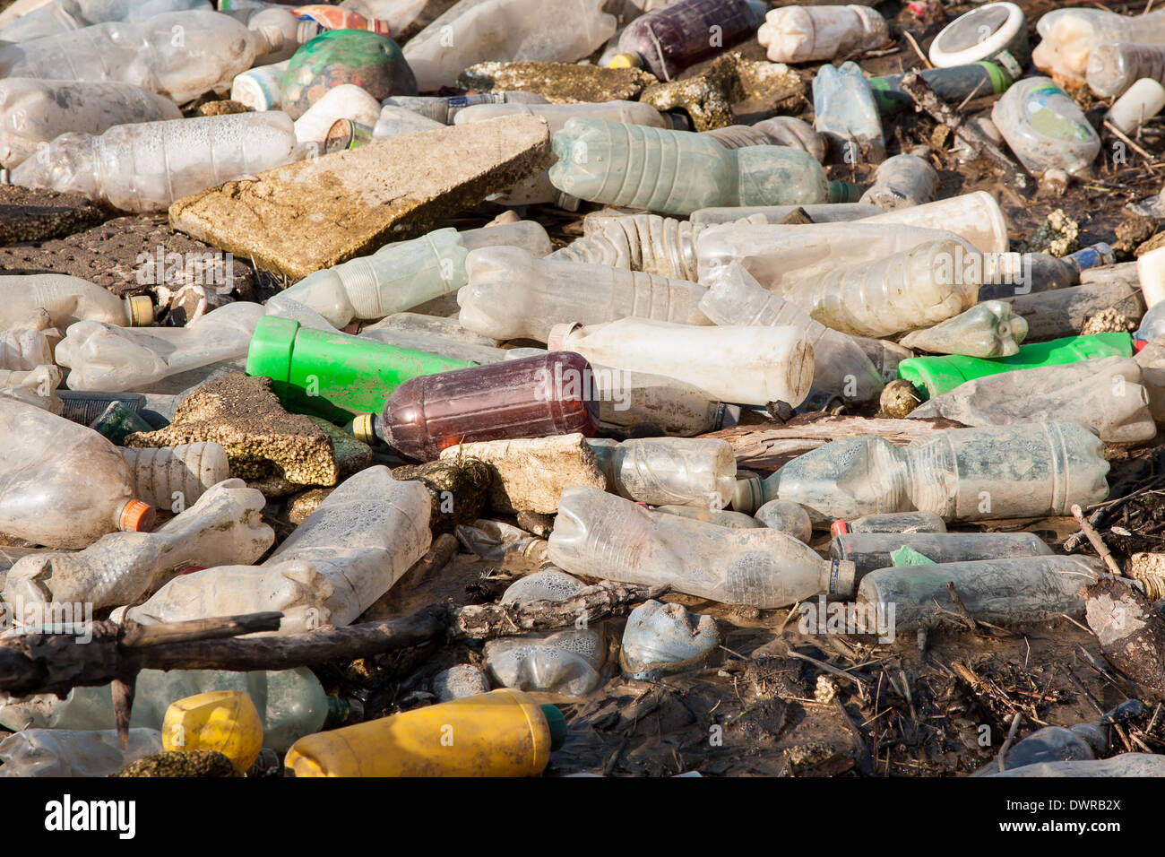Inquinamento ambientale. Le bottiglie di plastica sulla discarica illegale Immagini Stock