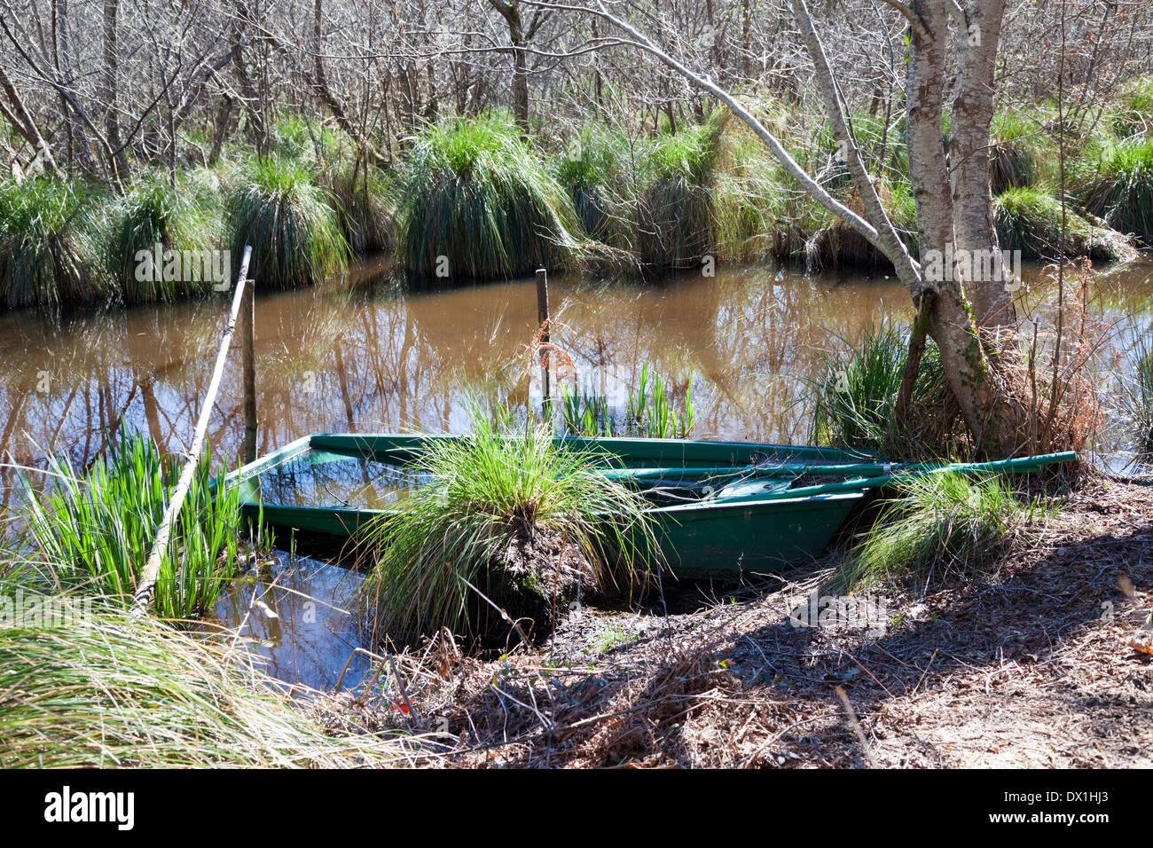Il poco profondo outlying paludi del Leon stagno (Francia); solo un fondo piatto in piccola barca permette di far circolare attraverso di loro. Immagini Stock