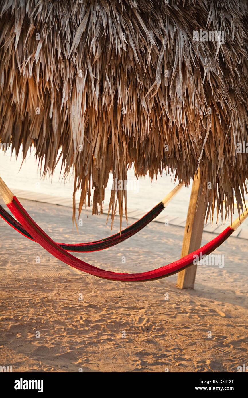 Amache Hanging sotto la palapa sulla spiaggia soleggiata, inclinazione Immagini Stock