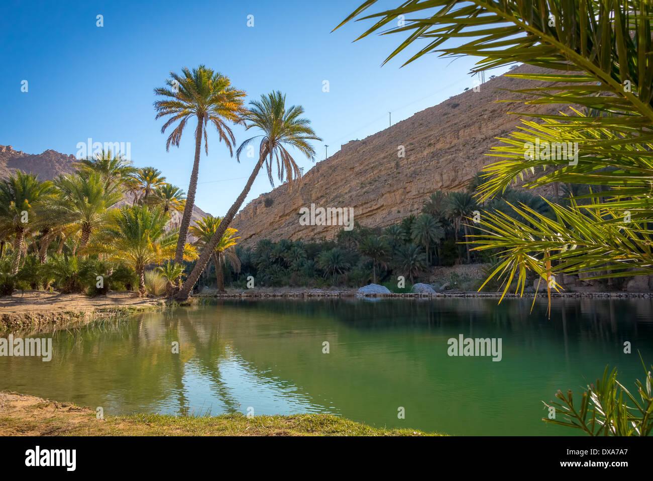 Piscina naturale di Wadi Bani Khalid, Sultanato di Oman, uno dei più famosi luoghi turistici in paese. Immagini Stock