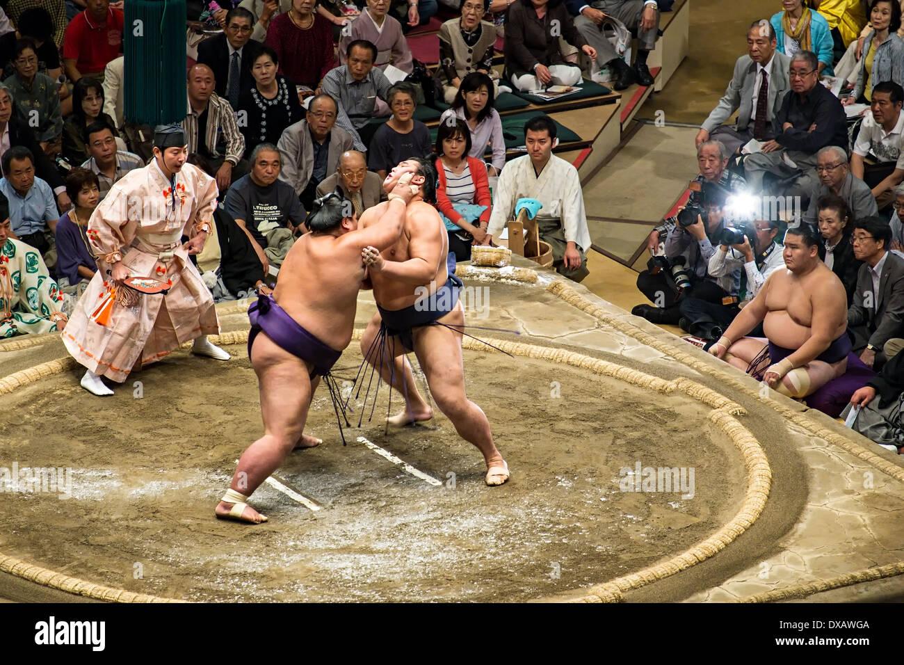 Lottatori di Sumo lotta nel wrestling ring a 2013 Settembre Grandi Campionati di Sumo al Ryogoku Kokugikan, Tokyo, Giappone Immagini Stock