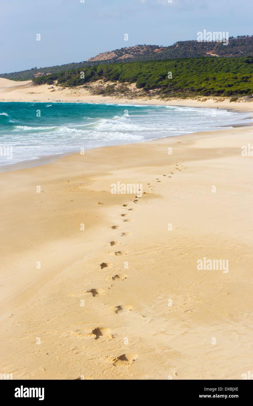 Bolonia Beach, Tarifa, Cadice provincia, Costa de la Luz, Andalusia, Spagna Foto Stock