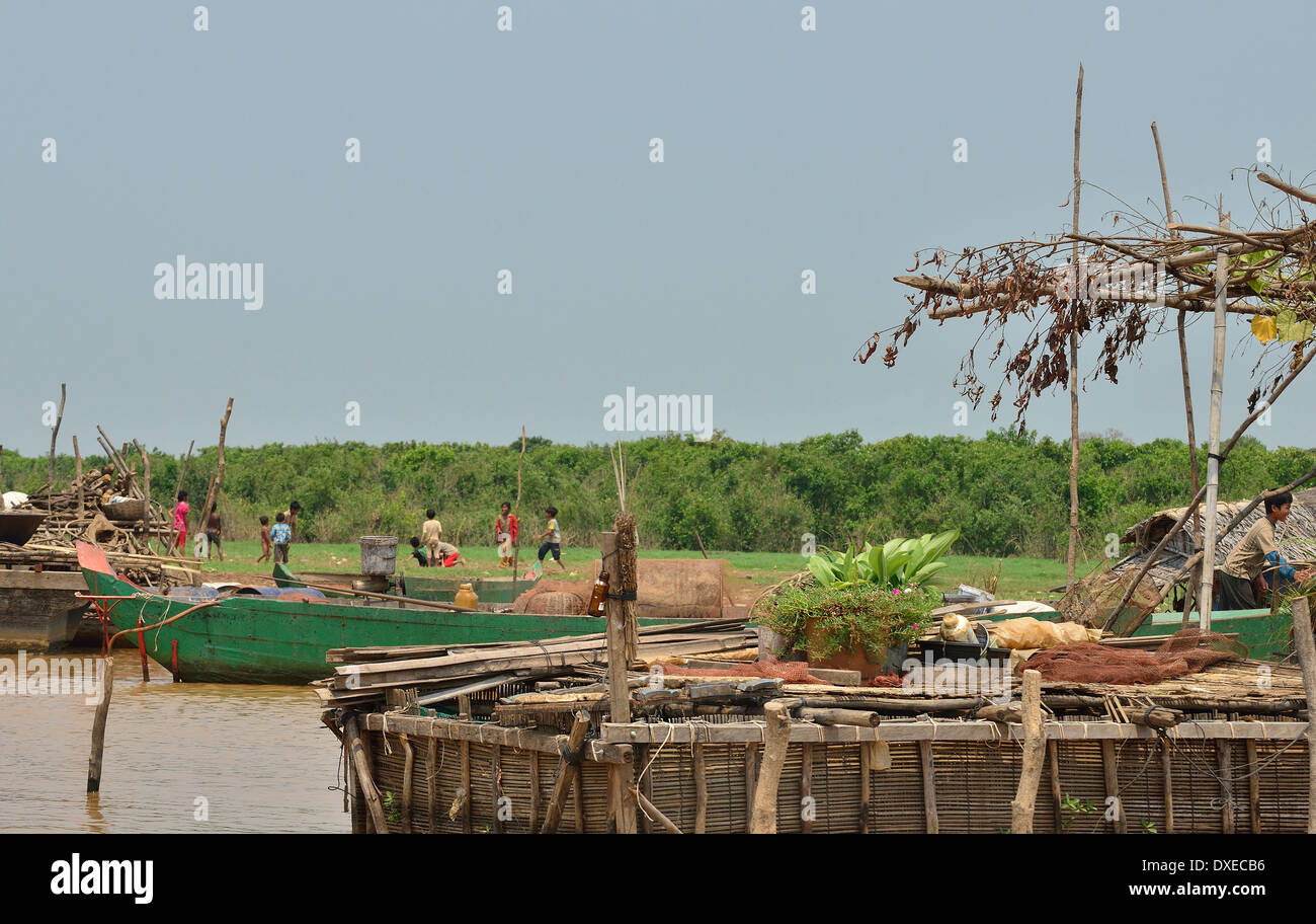 Le barche sono gli unici mezzi di trasporto in questa regione, il taglio di canne per il rivestimento di tetti mentre a secco e la molla stagione crescente Immagini Stock