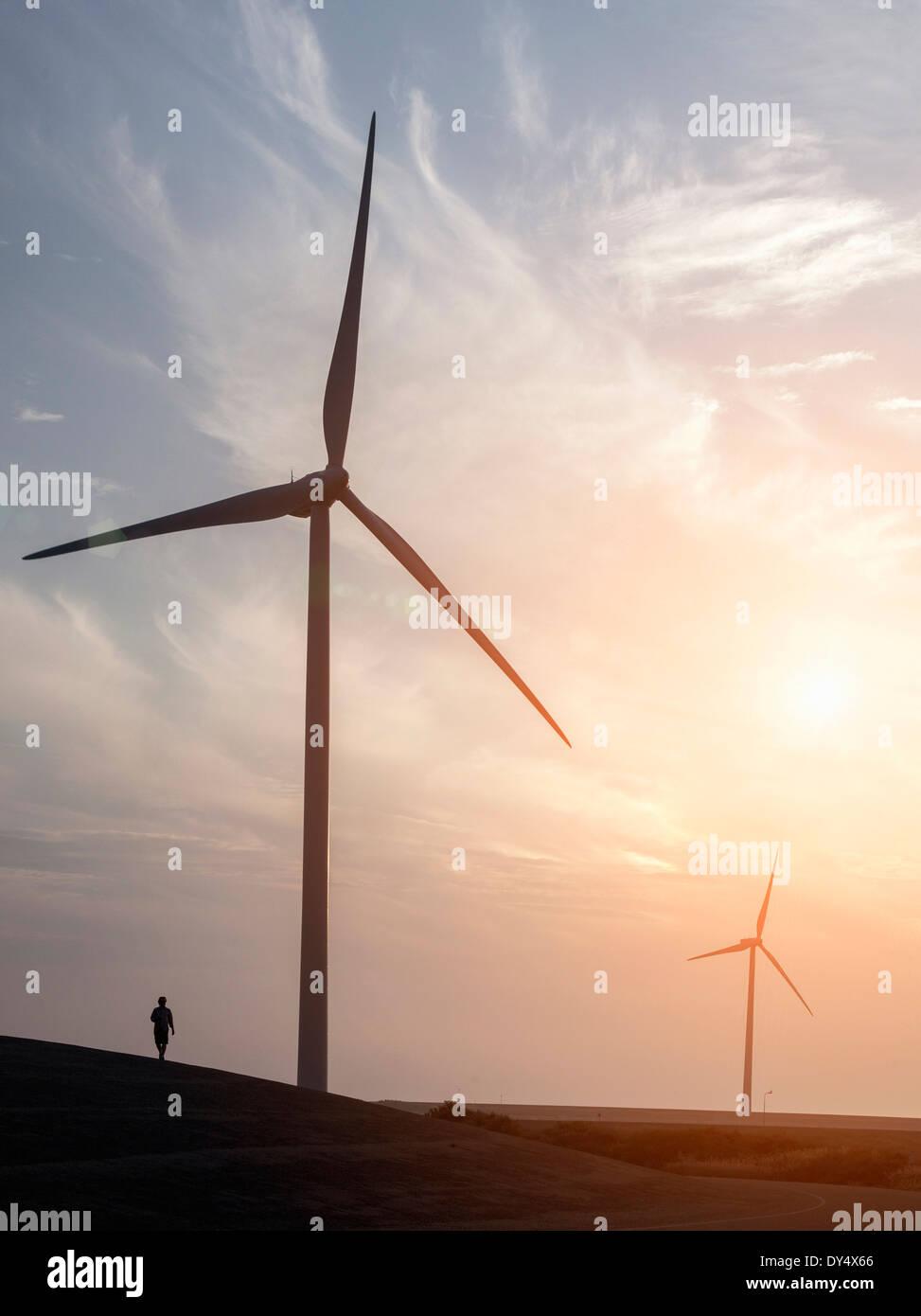 L'uomo passeggiando nei pressi di turbine eoliche e Schelda orientale Storm barriera di sovratensioni progettato per proteggere i Paesi Bassi da inondazioni. Immagini Stock