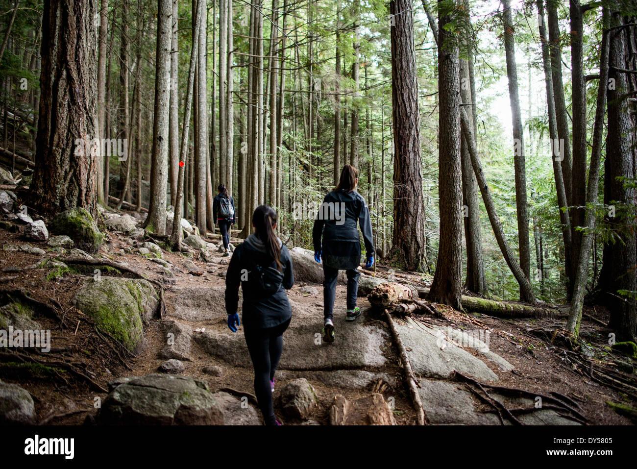 Tre giovani femmine escursionisti in foresta, Squamish, British Columbia, Canada Immagini Stock