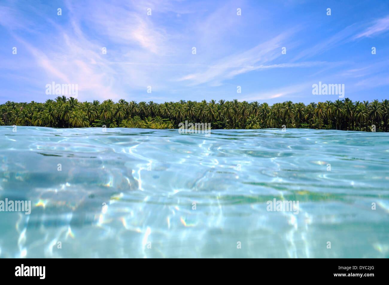 Gli alberi di cocco orizzonte dalla superficie dell'acqua Immagini Stock
