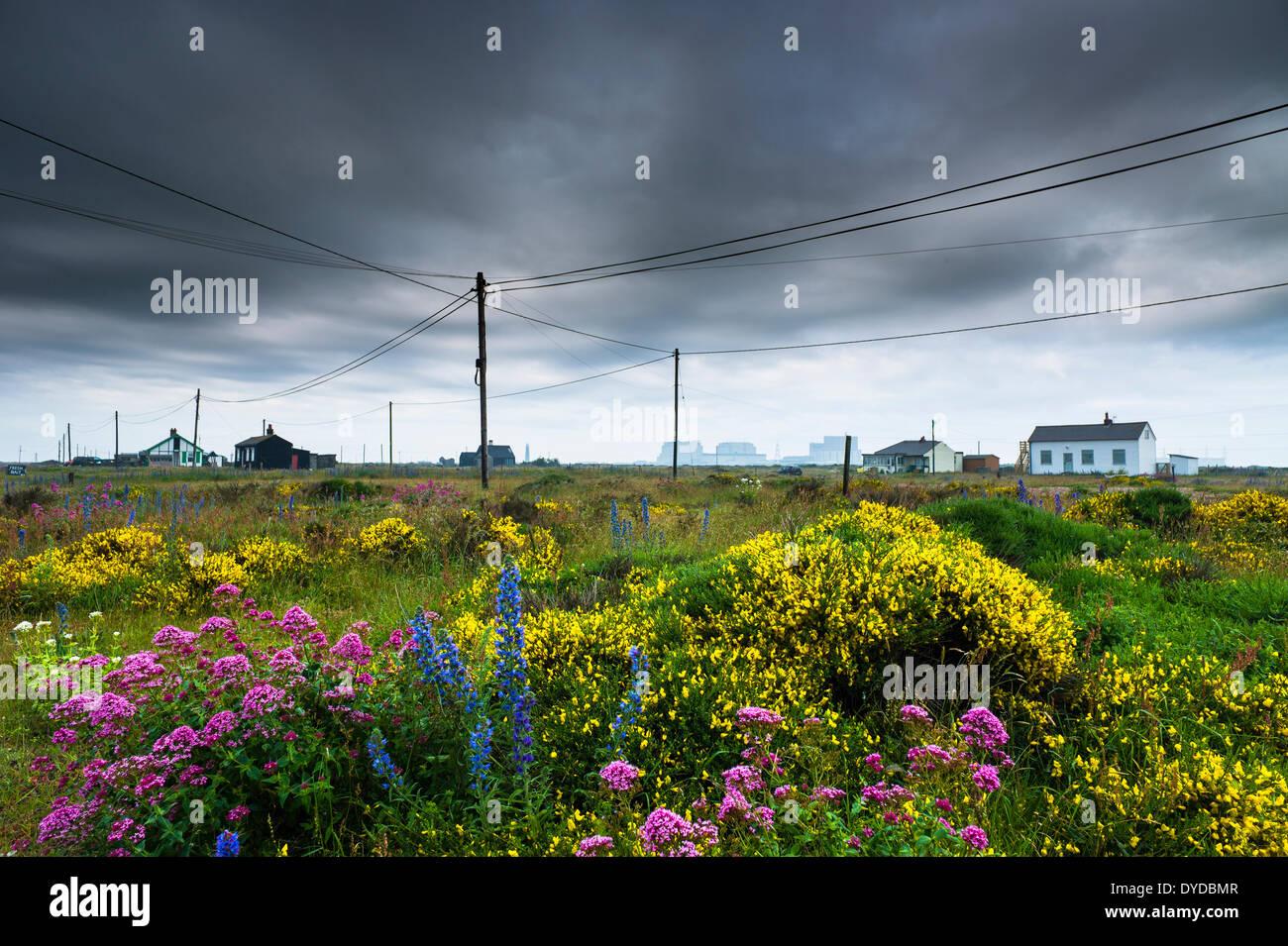 Ealry vista la mattina di Dungeness con la sua dispersione di edifici in legno e pali del telefono. Immagini Stock