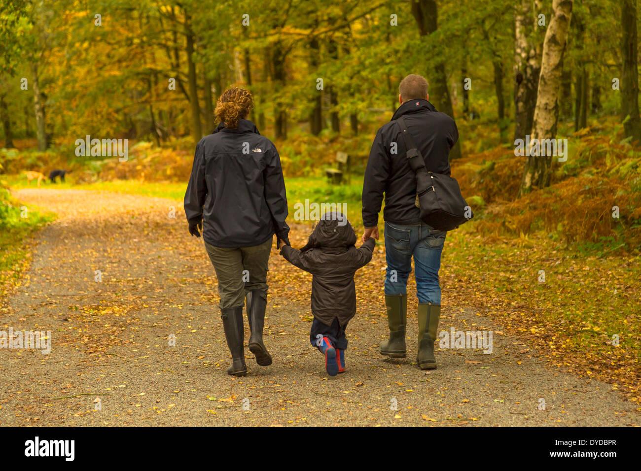 Un giovane passeggiate attraverso boschi tenendo i suoi genitori le mani. Immagini Stock