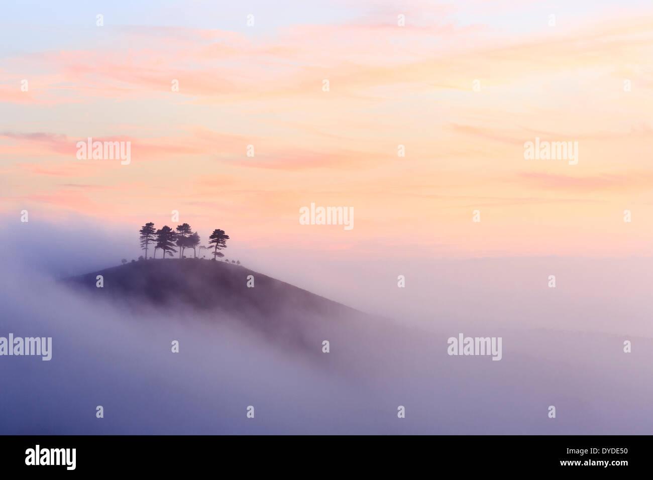 Colmer's Hill nel Dorset in una nebbiosa mattina autunnale. Immagini Stock