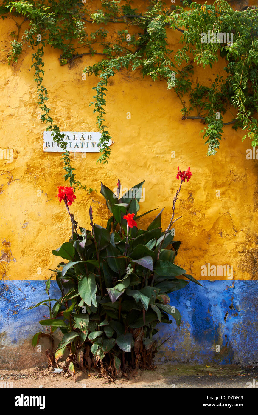 Una parete spiovente in una remota parte rurale del Portogallo. Immagini Stock