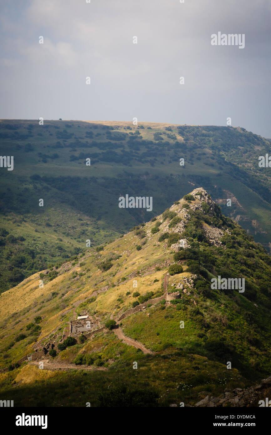 Gamla riserva naturale, Golan, Israele. Immagini Stock