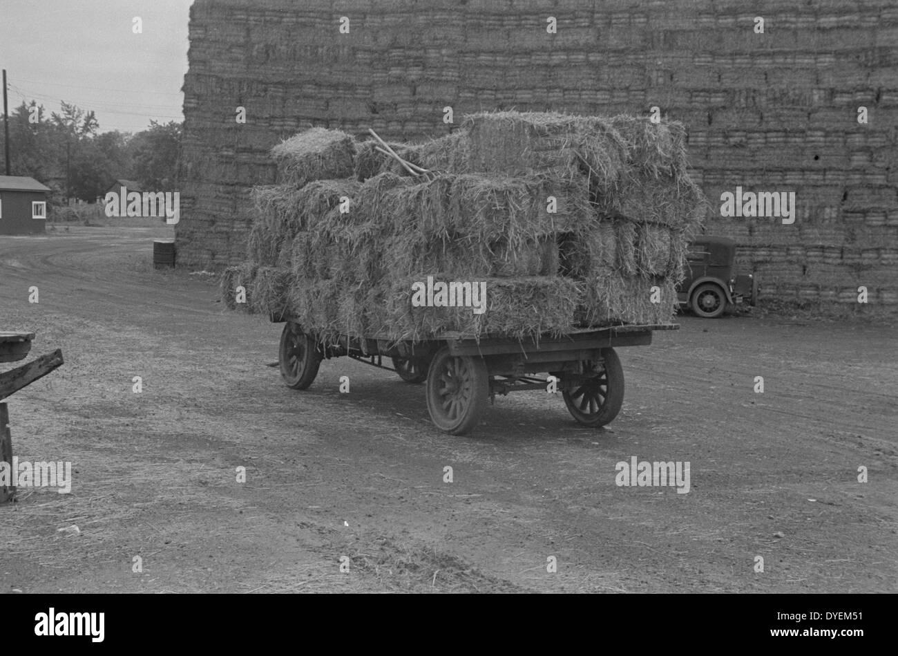 Balle di paglia per essere utilizzato per la produzione di cartoni paglia nella grande depressione, Immagini Stock