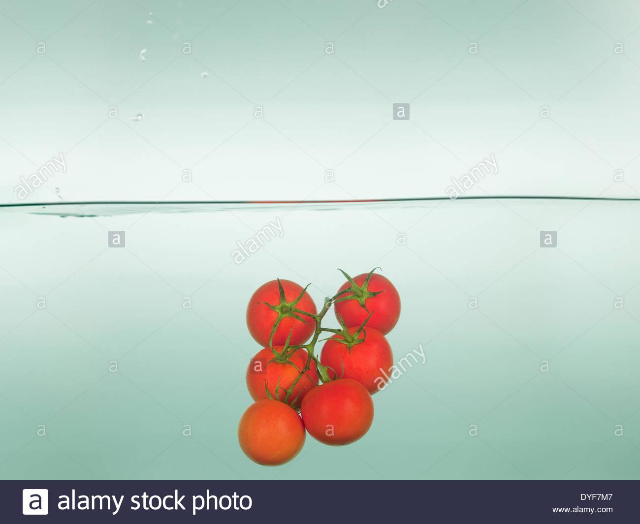 Pomodori schizzi in acqua Immagini Stock