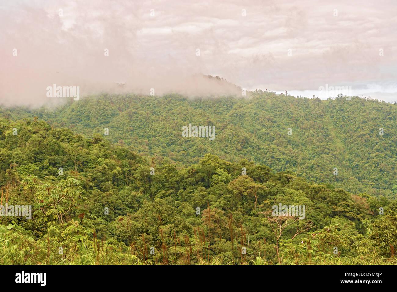 Montagne e foreste pluviali tropicali in Fortuna National Park a Panama in data 8 gennaio 2014. Immagini Stock