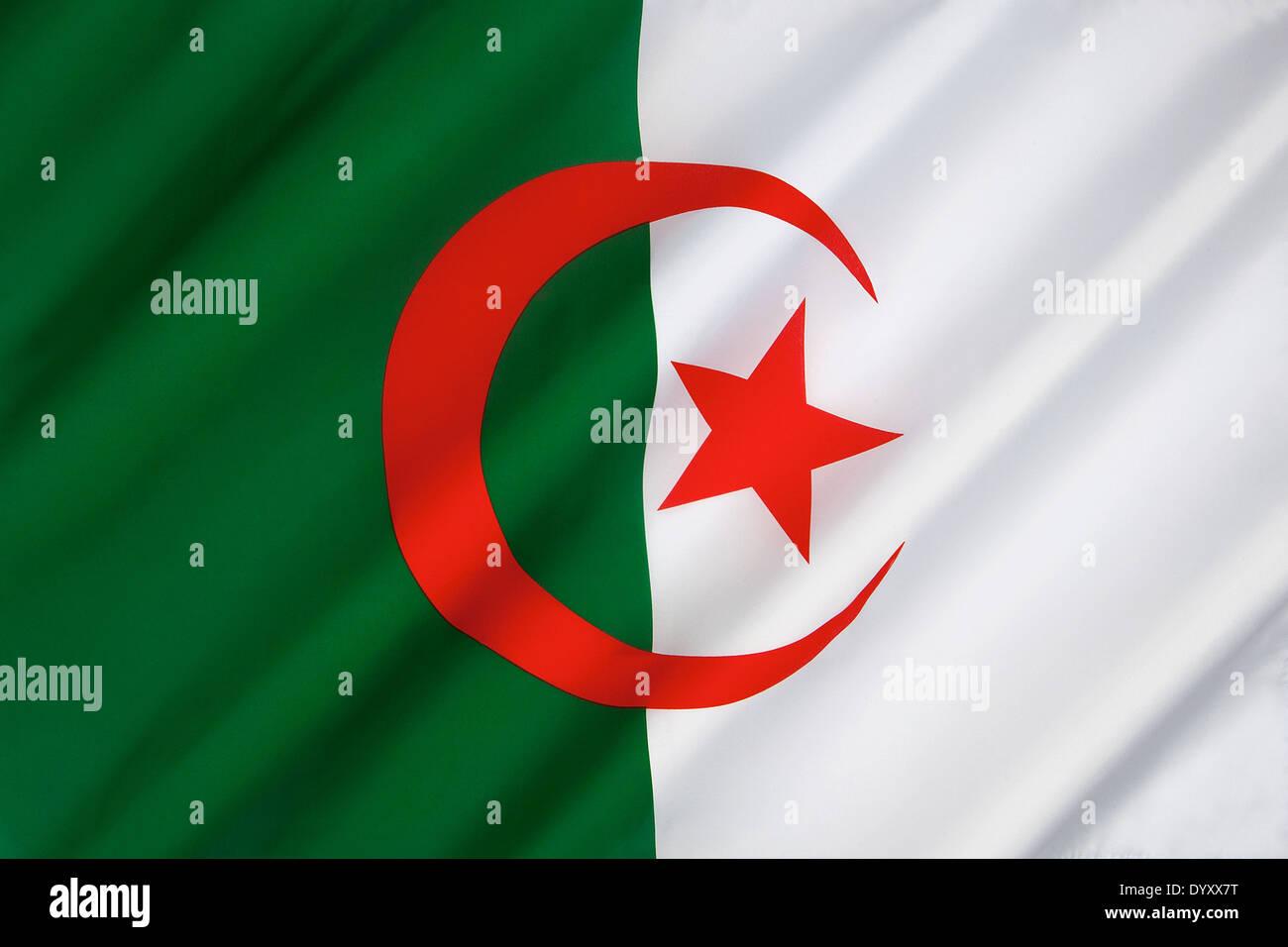 La bandiera nazionale di Algeria Immagini Stock