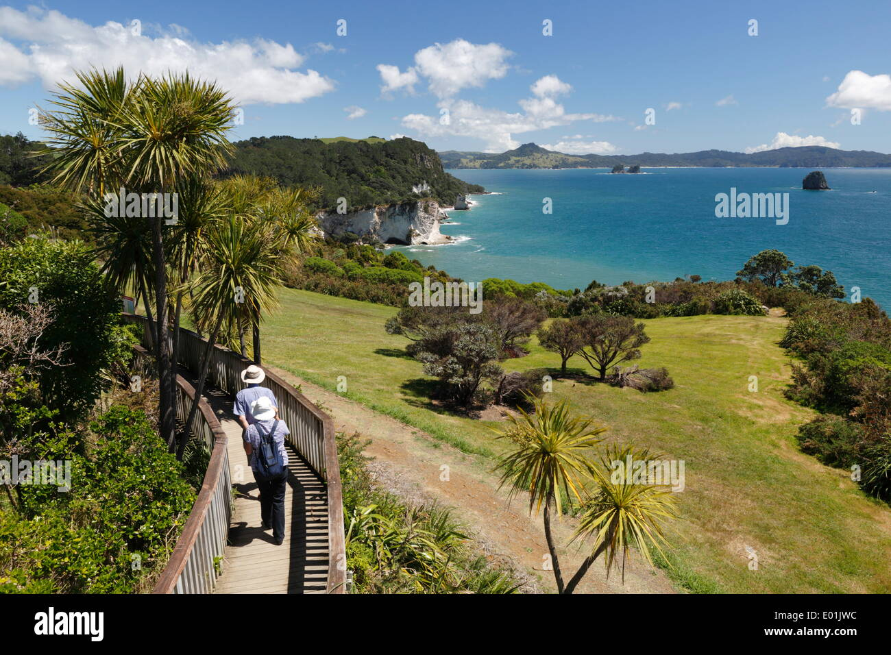 Vista lungo Cove della cattedrale riserva ricreativa, Hahei, Penisola di Coromandel, Waikato, Isola del nord, Nuova Zelanda, Pacific Immagini Stock