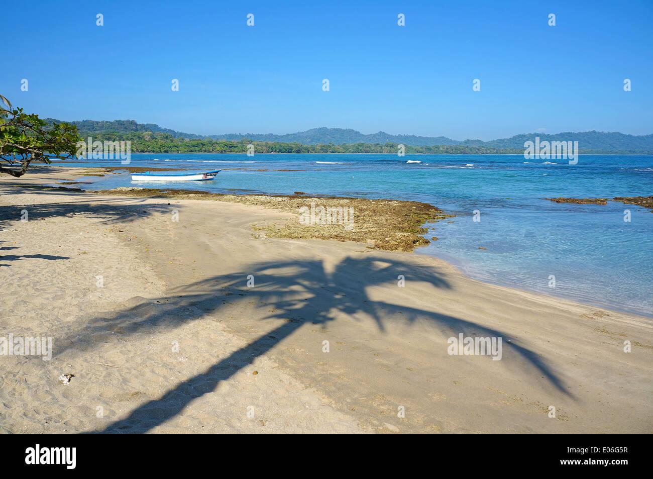 Ombra di palma su una spiaggia tranquilla, sul mare dei Caraibi, Puerto Viejo de Talamanca, Costa Rica Immagini Stock