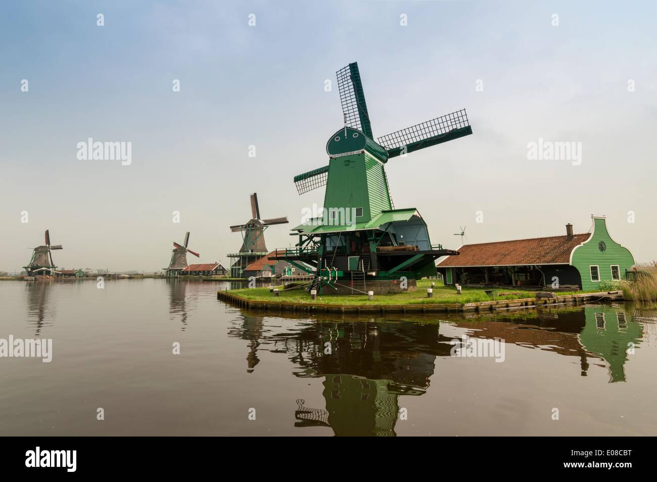 Quattro mulini a vento olandese e il canale a Zaanse Schans PAESI BASSI IN PRIMAVERA Immagini Stock