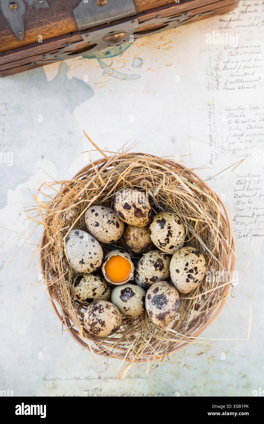 Nido di uova di quaglia su carta con la scrittura e la cassa di legno, vista in elevazione Immagini Stock