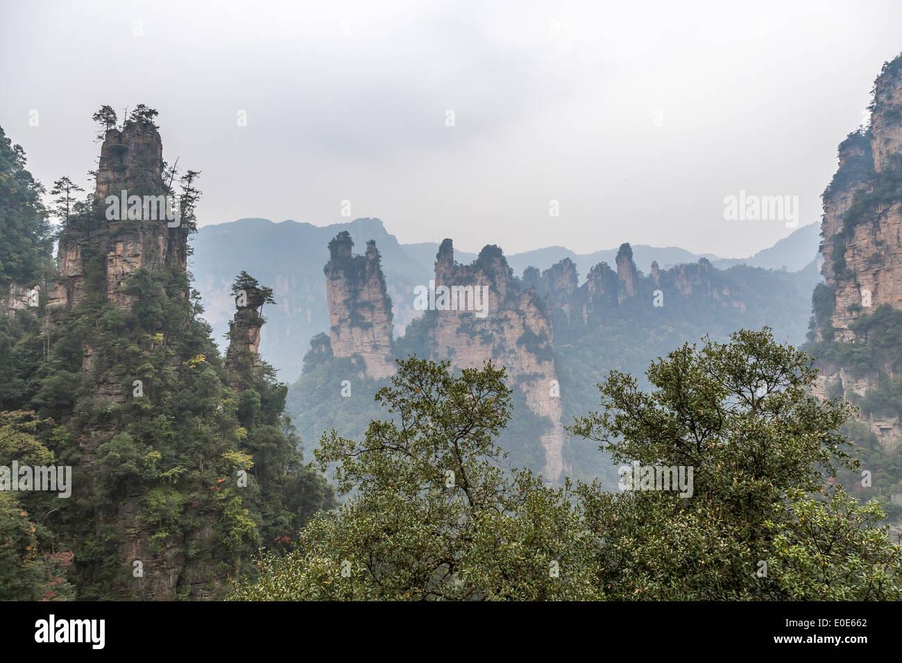 Zhangjiajie National Forest Park Avatar montagne Immagini Stock