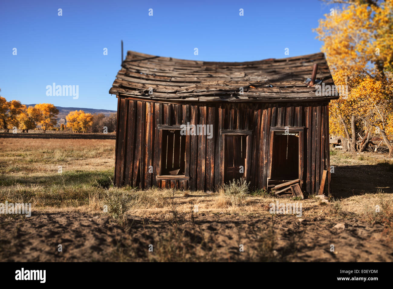 Abbandonato homestead Immagini Stock