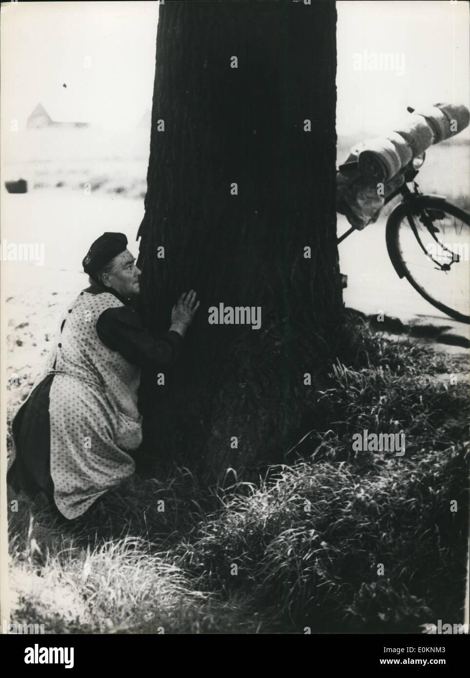 05 maggio 1940 - Ricercatore biologico alimenta Baby Pig Immagini Stock