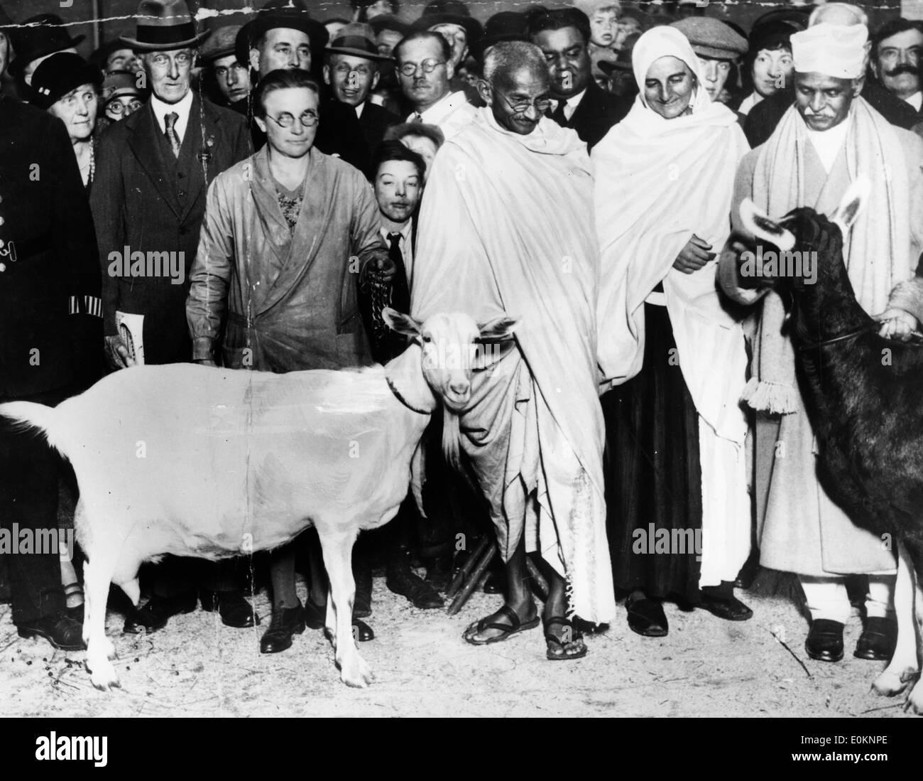 Il Mahatma Gandhi e la sua capra Immagini Stock