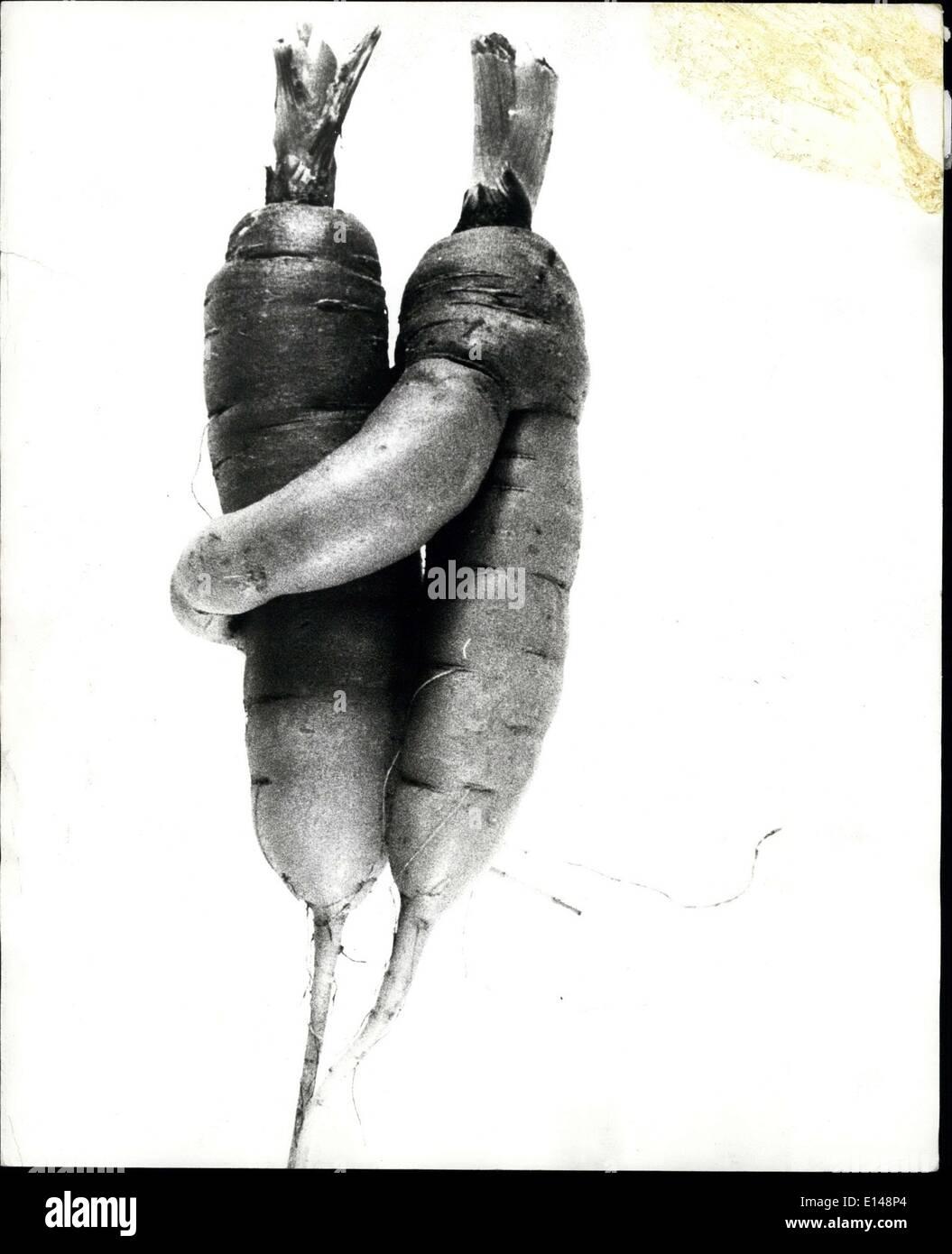Apr. 17, 2012 - Carote nell'amore: Essa può essere solo la natura poco scherzo ma questi due carote scavato recentemente in Svizzera davvero sembrano caduti per ogni altro in un grande modo. Forse potranno essere bisogno di un 24-carota anello di nozze. Immagini Stock