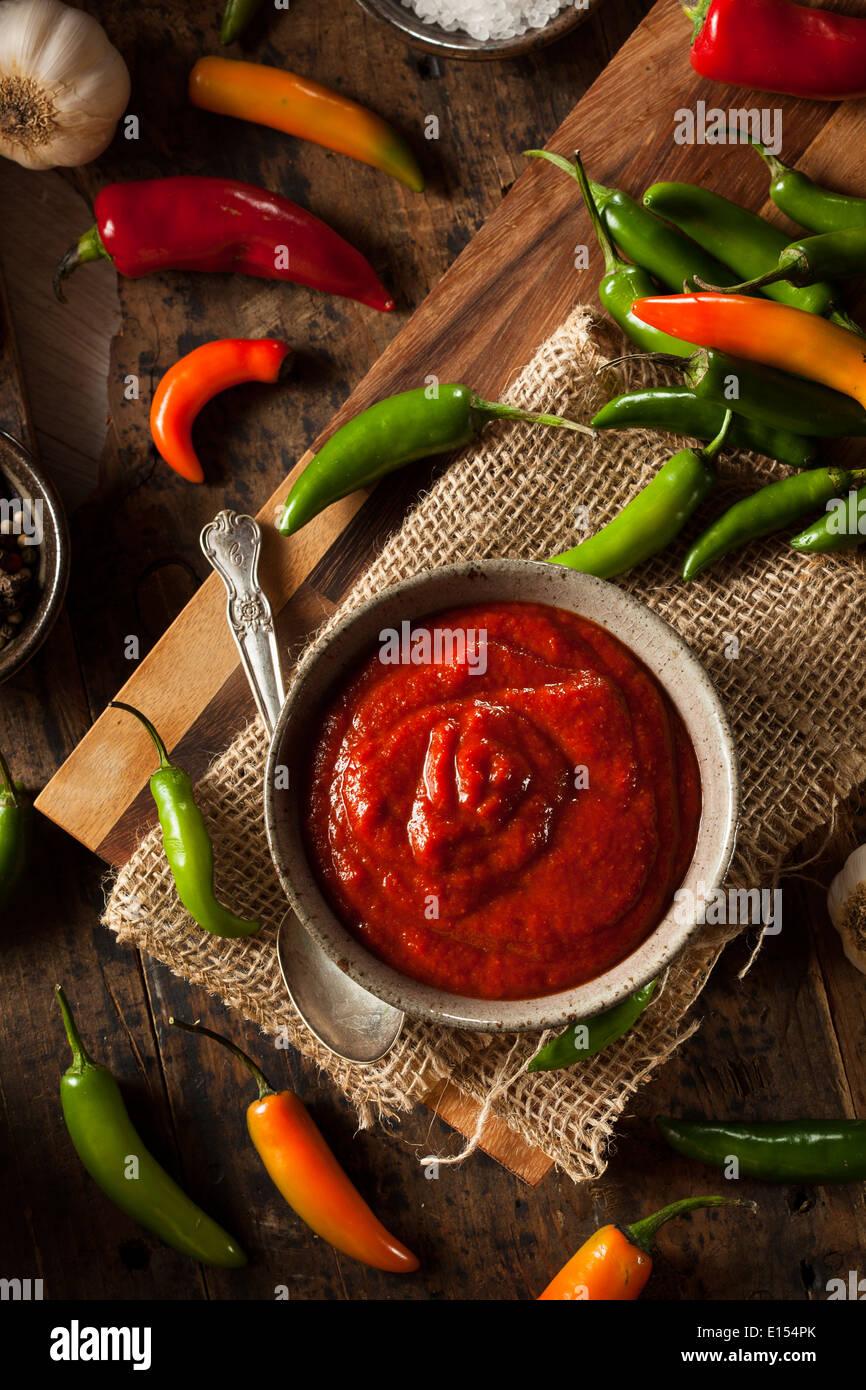 Hot Spicy Red Sriracha salsa in una ciotola Immagini Stock