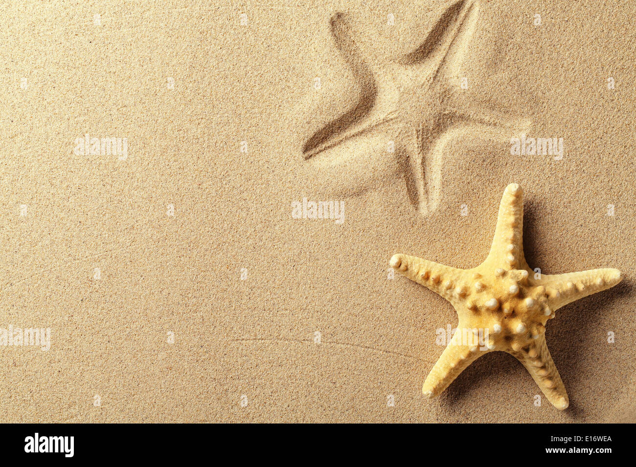 Seashell con impronta sulla spiaggia di sabbia Immagini Stock