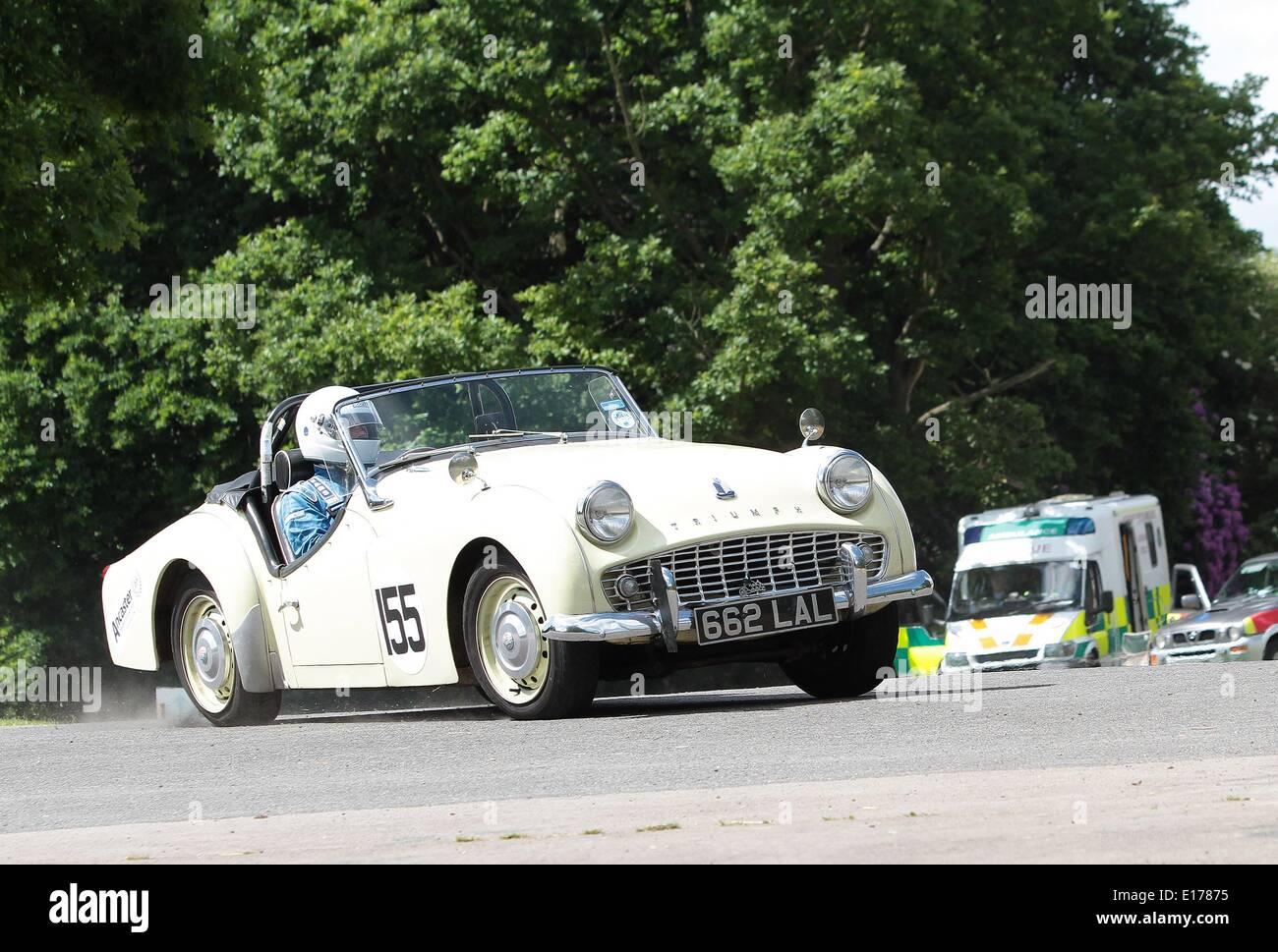 A concorrenti del 2014 Motor Sport presso il palazzo al Crystal Palace Park South London 25.05.2014 Immagini Stock